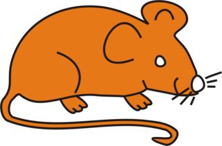 Maus orange - Maus, Nagetier, Anlaut M, fröhlich, Illustration, Farbe, orange