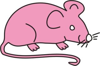 Maus rosa - Maus, Nagetier, Anlaut M, fröhlich, Illustration, Farbe, rosa, pink