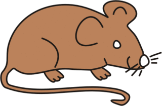 Maus braun - Maus, Nagetier, Anlaut M, fröhlich, Illustration, Farbe, braun