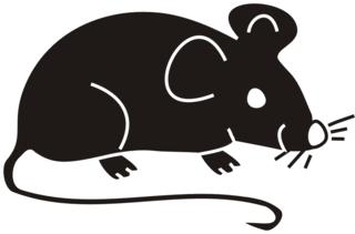 Maus schwarz - Maus, Nagetier, Anlaut M, fröhlich, Illustration, Farbe, schwarz