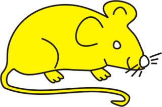Maus gelb - Maus, Nagetier, Anlaut M, fröhlich, Illustration, Farbe, gelb