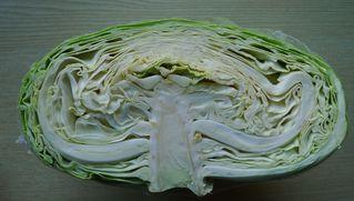 Jaromakohl - Jaroma, Kohl, Gemüse, Querschnitt, Schnittfläche