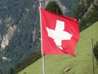 Flagge - Schweiz, Nationalflagge, Flagge, Fahne, rot, weiß, Quadrat, Wiese, Gebirge, Hang, Rotes Kreuz, Logo, Fahnenmast, Kreuz, Hohheitszeichen