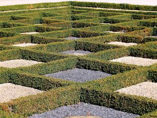 Gartenkunst in den Herrenhäuser Gärten in Hannover - Buchsbaum, Beet, Garten, Gartenanlage, Kunst, Schach, Schachbrett, Symmetrie, Rechteck, rechteckig, Perspektive, symmetrisch, Raute