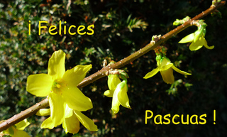 Ostergruß spanisch - Ostern, felices, pascuas, Grußkarte, Osterfest