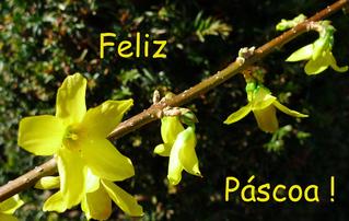 Ostergruß portugiesisch/brasilianisch - Ostern, Ostergruß, frohe, Ostern, Grußkarte, feliz, páscoa