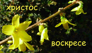 Ostergruß - russisch - Ostern, Ostergruß, Fest