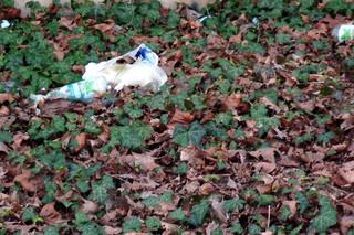 Abfall in der Natur entsorgt #1 - Müll, wilder Müll, Abfall, entsorgen, Natur, wild