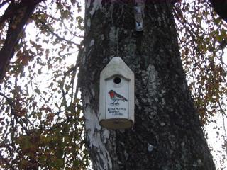 Nisthilfe - Nisthilfe, Nistkasten, Brut, Nachwuchs, Artenschutz, Vogelschutz, Vogel