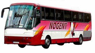 Bus - Bus, Omnibus, Reisebus, Verkehrsmittel, Kraftwagen, Kraftfahrzeug, Fahrzeug, Personenbeförderung, Personenverkehr, motorisiert, rollen, Sightseeing, Tourismus, Stadtrundfahrt