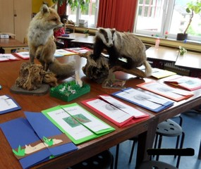 So sehen die Lapbooks zum Findefuchs aus! - Lapbook, Deutsch, Lektüre, Findefuchs, Grundschule