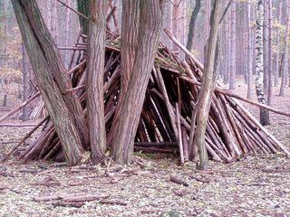 Hütte aus Holz - Hütte, Holz, Wald, Abenteuer, spielen, bauen, alternatives Wohnen, survival, Spielplatz, Schreibanlass, Phantasiegeschichte