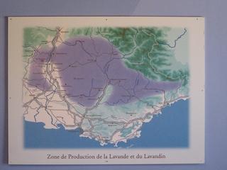 Lavendel Anbaugebiet Karte - Biologie, Pflanzen, Lippenblütler, Lavendel, Informationstafel