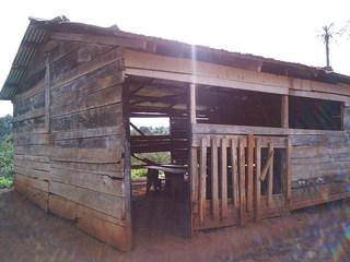 Schulgebäude in Afrika - Afrika, Schule, Gebäude, Holz, Hütte, Bretter, Entwicklungsland, Armut, Dritte Welt, Bildungssystem, Bildung, Kindheit