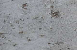 Regentropfen - Regen, Starkregen, Regentropfen, Wasser, Pfütze, Blase, Tropfen, Wassertropfen, Adhäsion, Kohäsion, benetzend, Oberflächenspannung, Teilchenkräfte, Molekularkraft, Physik, Grenzflächenspannung, kugelförmig