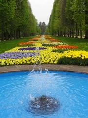 Park - Park, Parkanlage, Beet, Blumen, Springbrunnen, Wasser, Wasserspiel, Fontäne, Tulpen, Stiefmütterchen, Allee, Wasserdüse, Düse, Druck, Wassertropfen, sprudeln