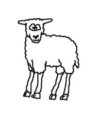 Schaf - Schaf, sheep, Schäfchen, Lamm, Lämmchen, Hornträger, Nutztier, Tier, Wolle, Cartoon, Zeichnung, Clipart