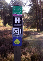 Wandern in der Natur#1 - Wanderweg, Reitweg, Weg, Erlebnisweg, Wegzeichen, Wegweiser, Wegmarkierung, Markierung, wandern, orientieren, Orientierungspunkt, Naturpark Südheide