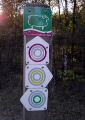 Wandern in der Natur#2 - Wanderweg, Reitweg, Weg, Erlebnisweg, Wegzeichen, Wegweiser, Wegmarkierung, Markierung, wandern, orientieren, Orientierungspunkt, Naturpark Südheide