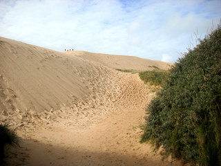 Düne  - Düne, Dünen, Sand, Küste, Wind, Strömung, hoch, Meer, Strand, Erhebung, Ablagerung, Vegetation