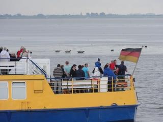 Seehunde2 - Sandbank, Seehunde, Seehundsbank, Elbe, Nordsee, ausruhen, Tourismus, Schiffsfahrt, Schiff, Fahne, Flagge, Heck, Deutschlandfahne