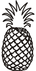 Ananas - Frucht, Anlaut A, Obst, Südfrüchte