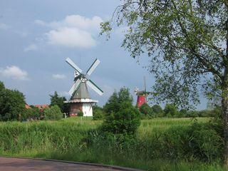 Zwillingsmühlen - Greetsiel, Mühlen, Ostfriesland, Gallerieholländer, Norddeutschland, Niedersachsen, Wind, Getreide, Gebäude,