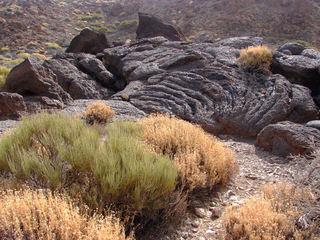 Teneriffa, erstarrte Lava  2 - Teneriffa, Lava, erstarrt, Canadas, Teide, Los Roques de Garcia