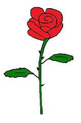 Rose #2 - Rose, Blume, Blüte, Dornen, Illustration, Anlaut R, Zeichnung, Liebe, Love, verliebt, Glück, Gefühl, Symbol, rot