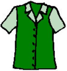 Hemd - Hemd, Oberhemd, Bluse, Kleidung, shirt, blouse, clothes, chemise, chemisier, vêtements, hemdartig, Kleidungsstück, Hemdbluse, Manschetten, Knöpfe, zuknöpfen, knöpfen, Stoff, Kragen, Taschen, Mode, Anlaut B, Anlaut H
