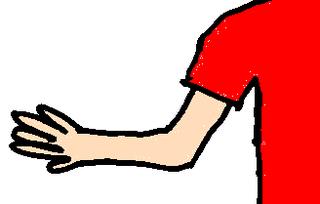 Arm - Arm, Körper, Körperteile, body, body parts, arm