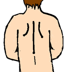 Rücken - Rücken, Körper, Körperteile, body, body parts, back, Wirbelsäule, Wörter mit ck