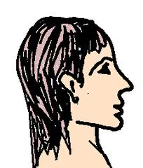 Kopf 1 - Kopf, Körper, Körperteile, body, body parts, head