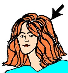 Haare 2 - Haare, Kopf, Körper, Körperteile, body, body parts, head, hair, Perücke