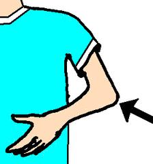 Ellbogen - Ellbogen, Ellenbogen, Arm, Körper, Körperteile, body, body parts, elbow, arm