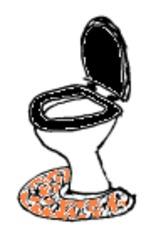 Toilette - Toilette, Klo, Badezimmer, Haus, Schule