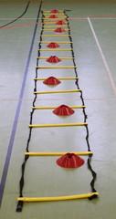 Koordinationsleiter - Koordination, Leiter, Training, Pylone, Schnelligkeit, Gerät, Agility