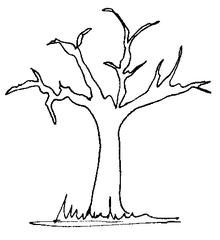 Baum - Baum, Wald, Garten, Natur, braun