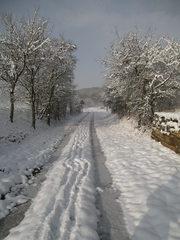 Verschneiter Waldweg #2 - Wald, Waldweg, Weg, Pfad, Winter, Schnee, verschneit, unbelaubt, romantisch, einsam, Laubbäume