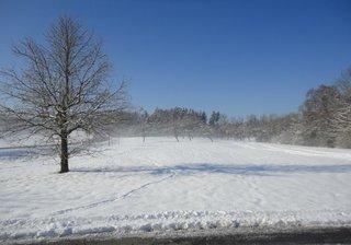 Winterspaziergang1 - Schnee, Winter, Schneelandschaft, Schneefeld, verschneit, Stille, Wetter