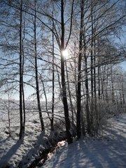 Winterspaziergang 2 - Winter, Schnee, Landschaft, Bach, Sonne, verschneit, Wetter