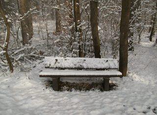 Verschneite Bank - Winter, Schnee, Bank, zugeschneit, verschneit, schneebedeckt