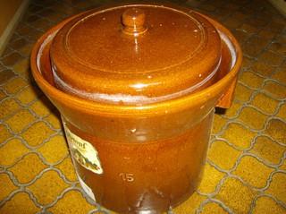 Herstellung von Sauerkraut #1 - Gärtopf, Sauerkraut, Herstellung, Milchsäuregärung, Kohlgemüse, Wintergemüse, Vitamin A, B, C, Milchsäure, kalorienarm, Kraut