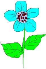 Blume 2 - Blume, Garten, Pflanze, Blüte, Blätter, Farbe, Blau, Türkis, Hellblau, Sommer