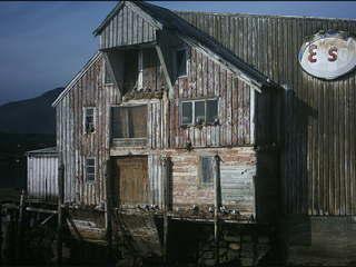 Haus am Hafen - Haus, Vögel, Hitchcock, Fjord, Hafen, Holzhaus, Holz, verfallen, Bruchbude, alt, unheimlich