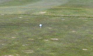 Golfball - Golf, Golfsport, Golfball, Kugel, Ballsportart, Ballsport, Freizeitsport, Natursport