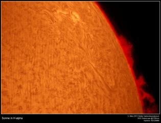 Chromosphäre der Sonne in H-Alpha (Auschnitt) - Sonne, Chromosphäre, Protuberanz, Fackeln, Filamete, chromosphärische Granulation