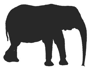 Elefant - Umriss  - Elefant, Afrika, Dickhäuter, schwer, Rüssel, schwarz, stehen, stark, Säugetier, Anlaut E