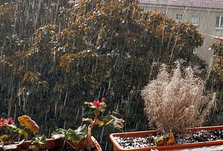 es hagelt - Hagel, Wetter, Eis, Niederschlag, Eisklumpen, Eishagel, Schloße, Hagelkorn, hageln
