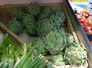Artischocken - Artischocke, Kulturpflanze, distelartig, Korbblütler, Schuppenblätter, Blütengemüse, Heilpflanze